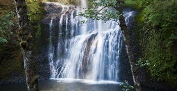 Waterfall splashing into forest lake in Oregon